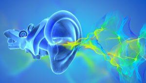 Травма барабанной перепонки: симптомы и лечение