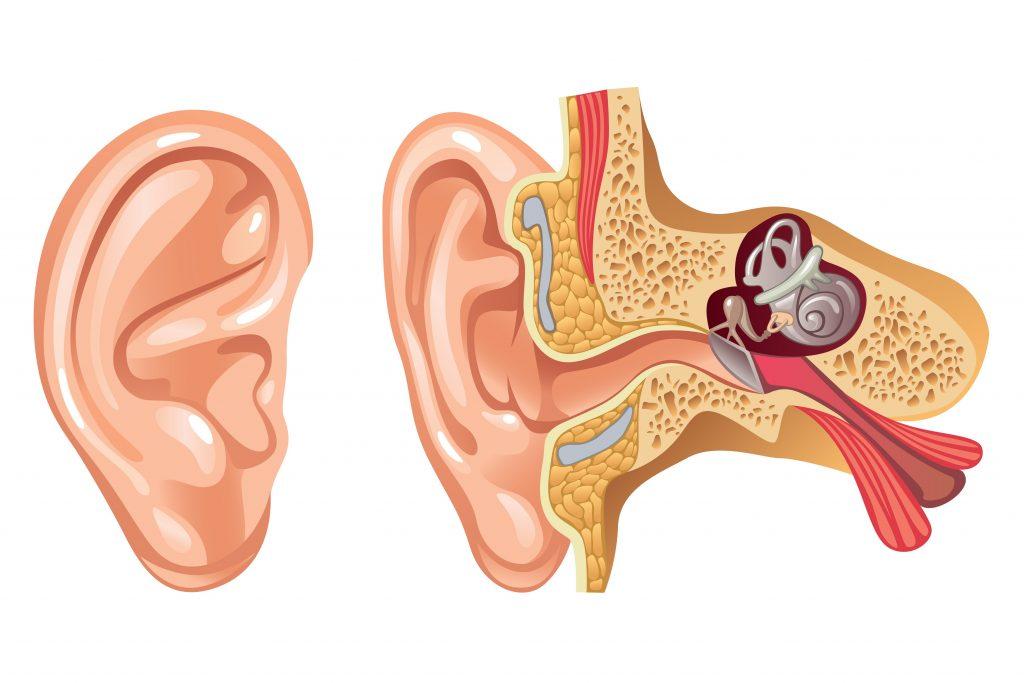 лечение рака слухового прохода