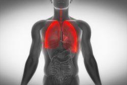 Пункция плевральной полости – ответы на ваши вопросы